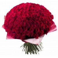 151 голландская роза