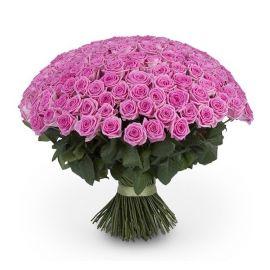 Розовые розы 201