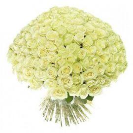 Белые розы 151