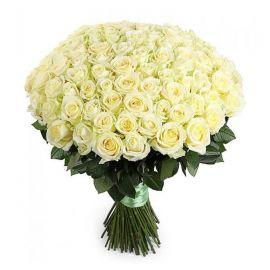 Белые розы 101