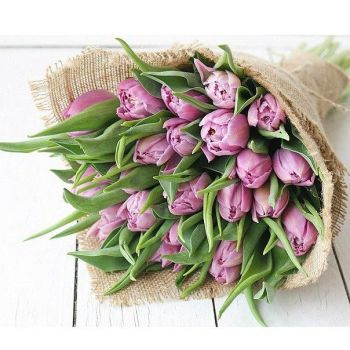Тюльпаны в мешковине