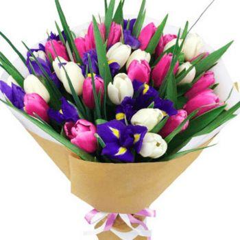 Ирисы-Тюльпаны