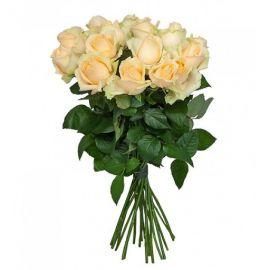Кремовые розы 15