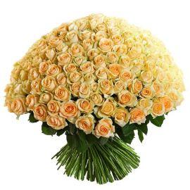 Кремовые розы 201