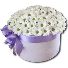 Коробка хризантем
