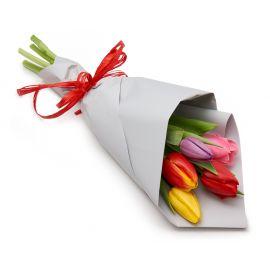 Тюльпаны для Золушки