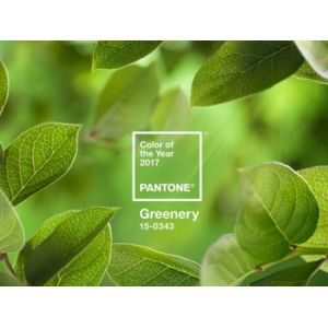 Травянисто-зеленый – главный цвет 2017 года по версии Pantone